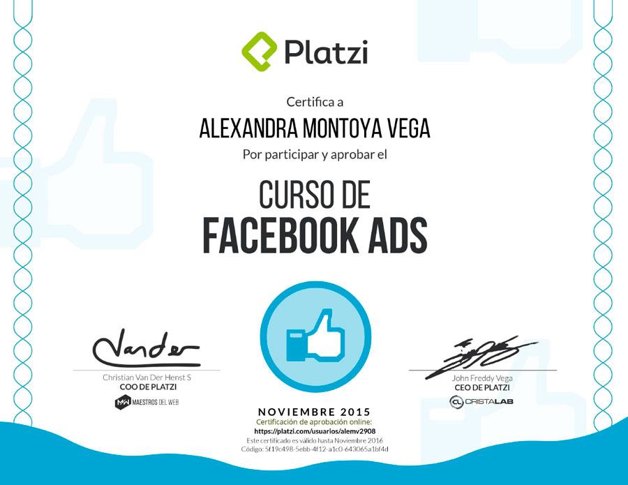 Curso de Facebook Ads