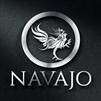 Logotipo en acero color plata PISCO NAVAJO